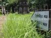 inside-cemetery-kolkata