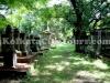 park_street_cemetery